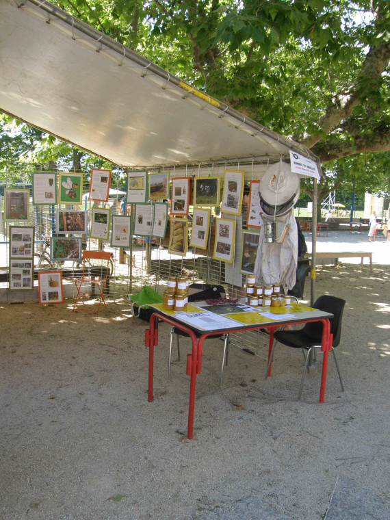 stand exposition apiculture urbaine